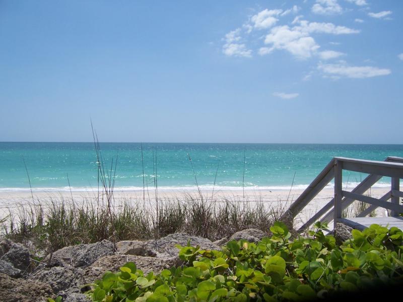 Sarasota Manatee County Real Estate Listings Team